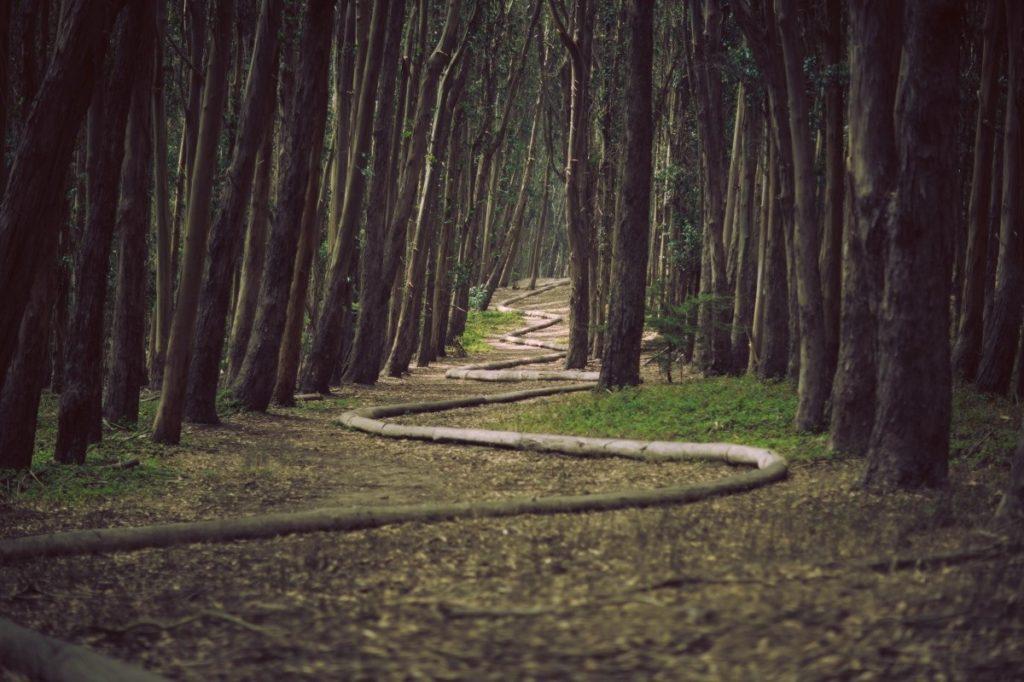 Photo mon parcours 1